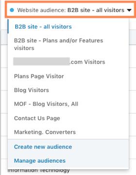 linkedin website demographics—screenshot of audience filtering option