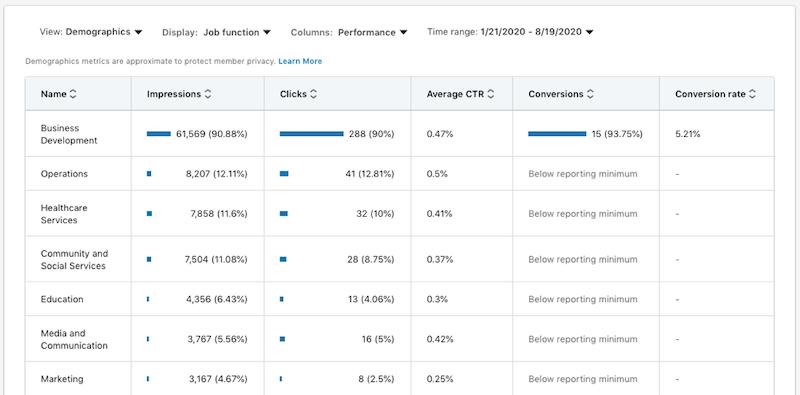 linkedinwebsite demographics—example of individual campaign report