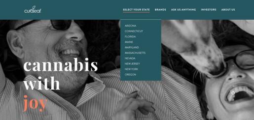 cannabis marketing MSO example