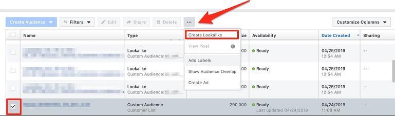 "select ""create a lookalike"" screen"