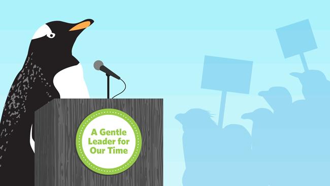 Google Fred Update Penguin 4