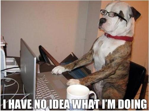 Improve your linkedin profile dog meme