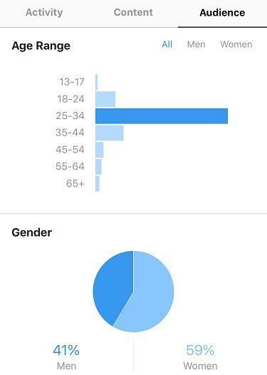 Instagram analytics audience insights
